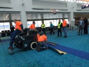 PDX Carpet Removal