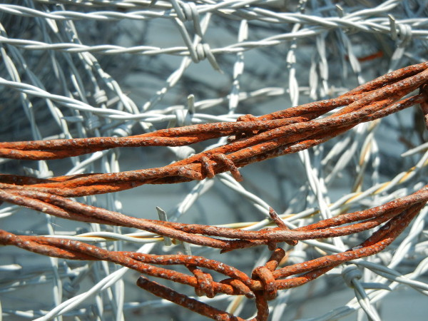 1280px-Rusty_Barbed_Wire