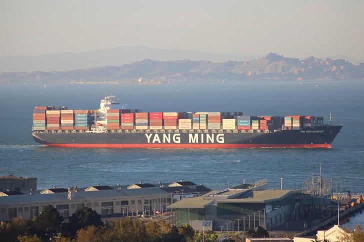 YM Movement, San Francisco Bay-15055624290