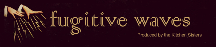 Fugitive-Waves-Banner-1