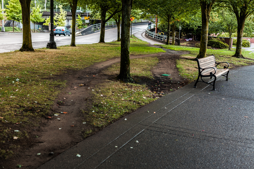 Least Resistance How Desire Paths Can Lead To Better