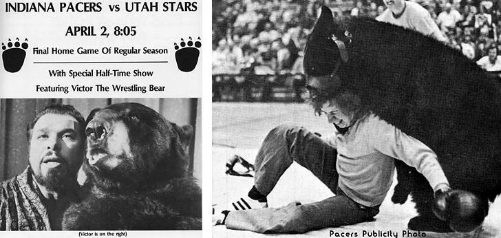 bear wrestling aba