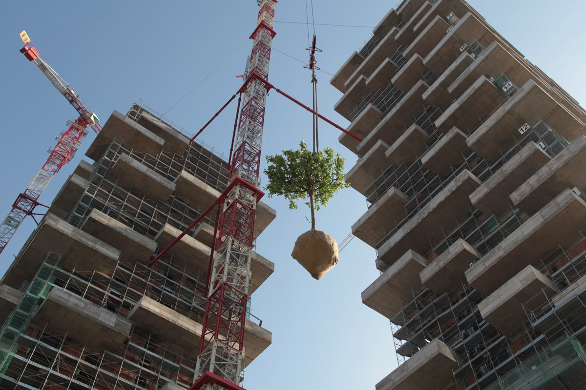 green tower plant lifting