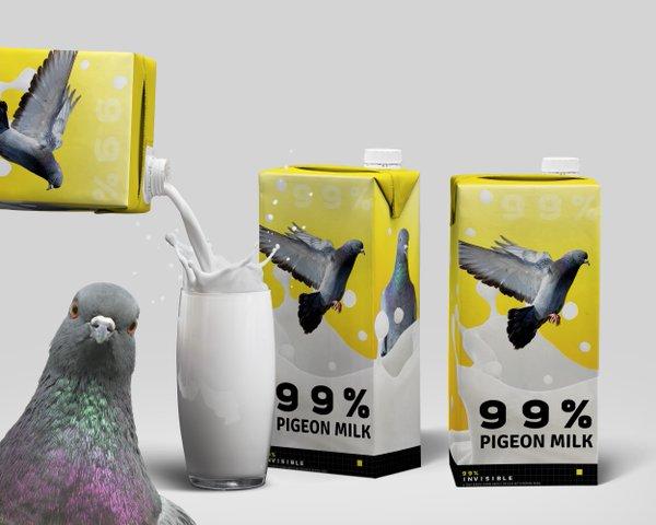 pigeon milks