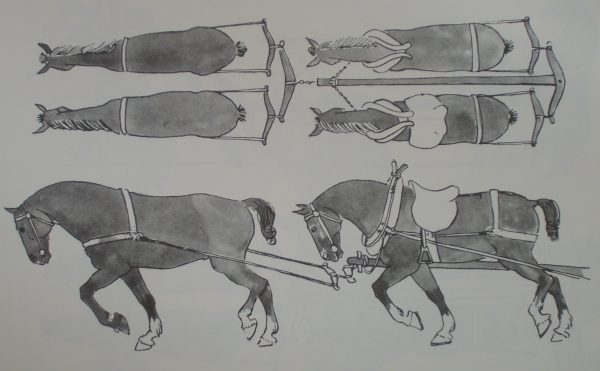 Medieval four-horse team: leaders and wheelers