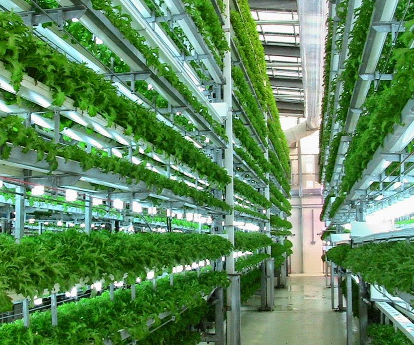 agricultural futures from home aeroponic gardens to vertical urban farms 99 invisible. Black Bedroom Furniture Sets. Home Design Ideas