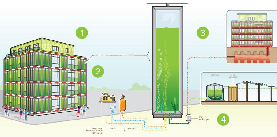 Architectural Ecosystems Bioreactors Generate Green