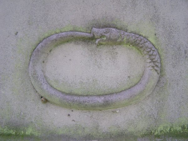 looped-snake