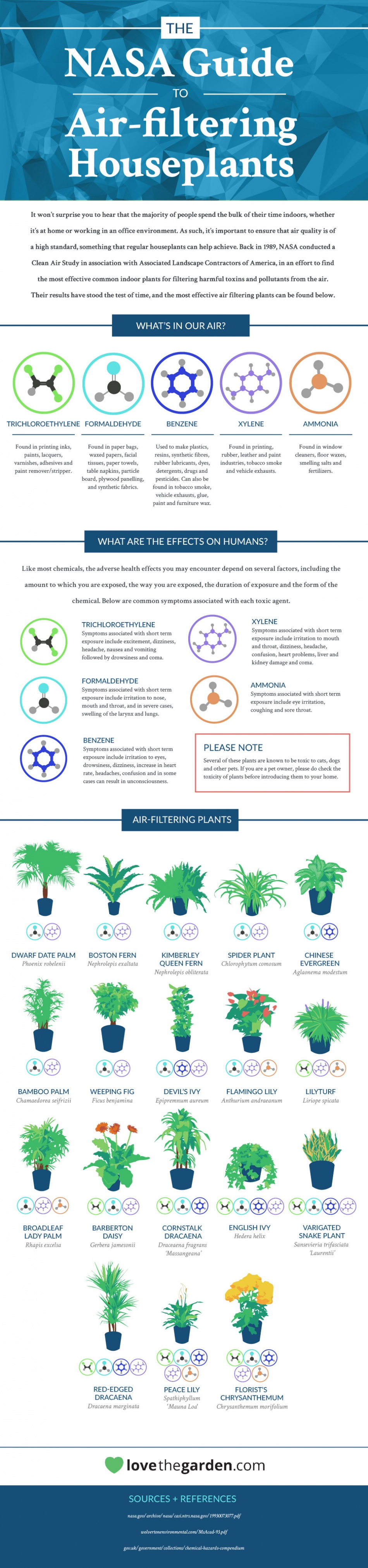 NASA guide to air-filtering houseplants, infographic by LoveAndGarden.com