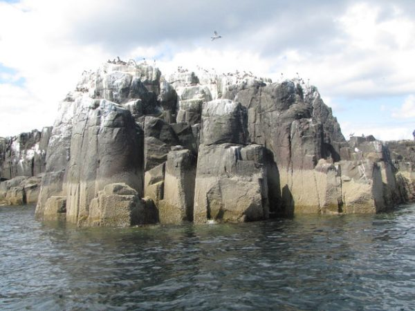 guano-covered-rocks
