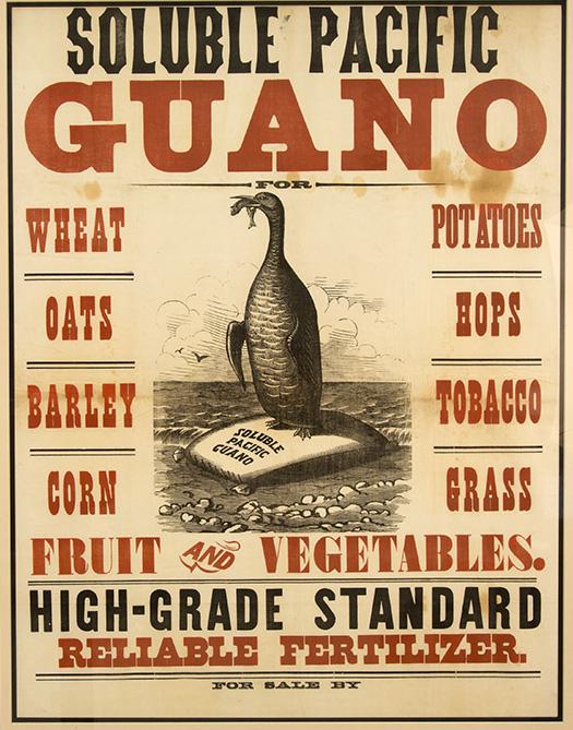 Guamo island