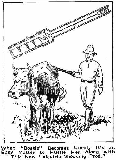 tom swift and his electric rifle 99 invisible Electric Fence for Livestock