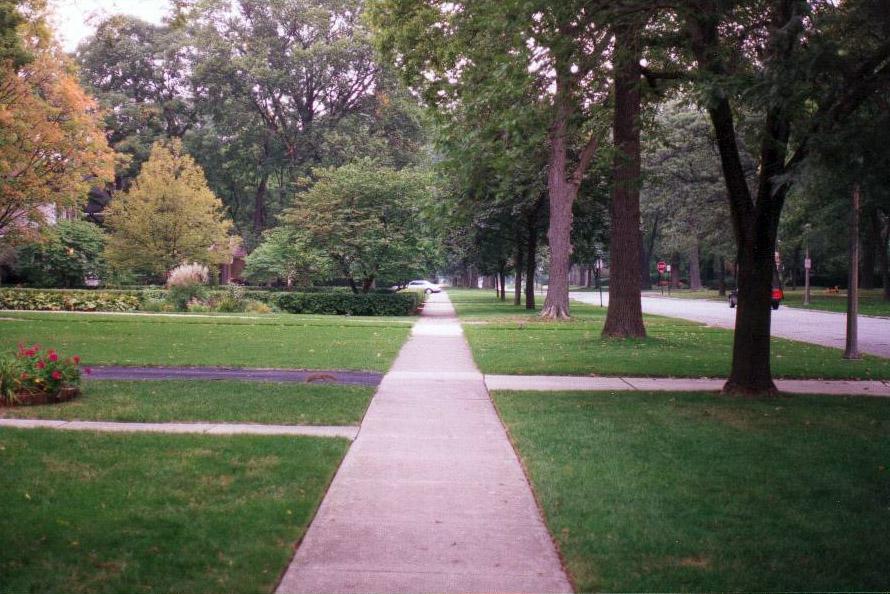 On Verges Exploring Roadside Landscape Strips Between